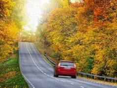 Billig Bilforsikring